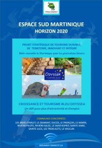 projet_strategique_integre_sud_martinique_horizon_2020_modele_odyssea_vdef_31102016