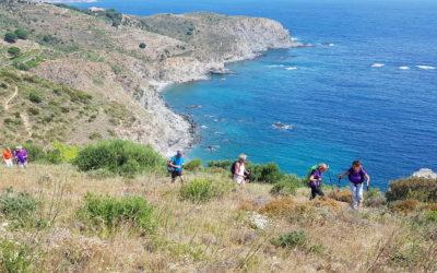 Repérage du circuit de la Route Bleue des Contrebandiers, Marins-pêcheurs et Vignerons, à Banyuls-sur-Mer