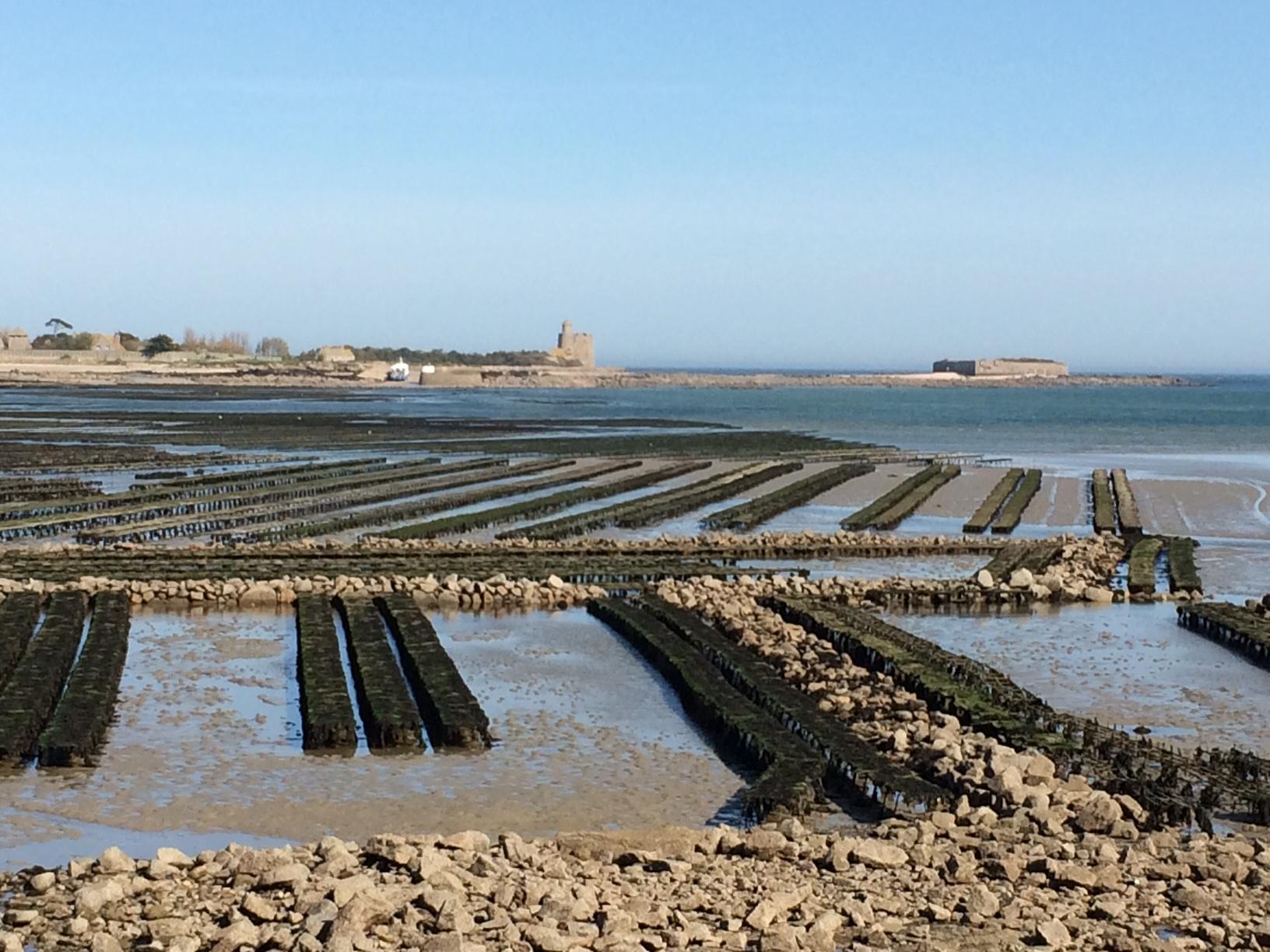 1ères visites sur site pour faire des villes-ports du Val de Saire les pilotes du programme Odyssea Tourisme et Croissance Bleue en Cotentin