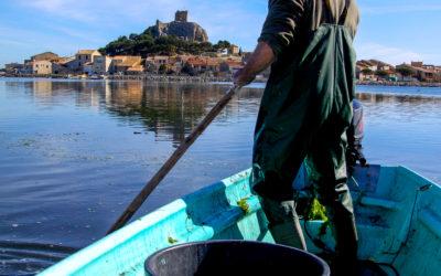 Soirée des Pêcheurs à Gruissan, dans le cadre de la Route Bleue du Sel et des Pêcheurs®