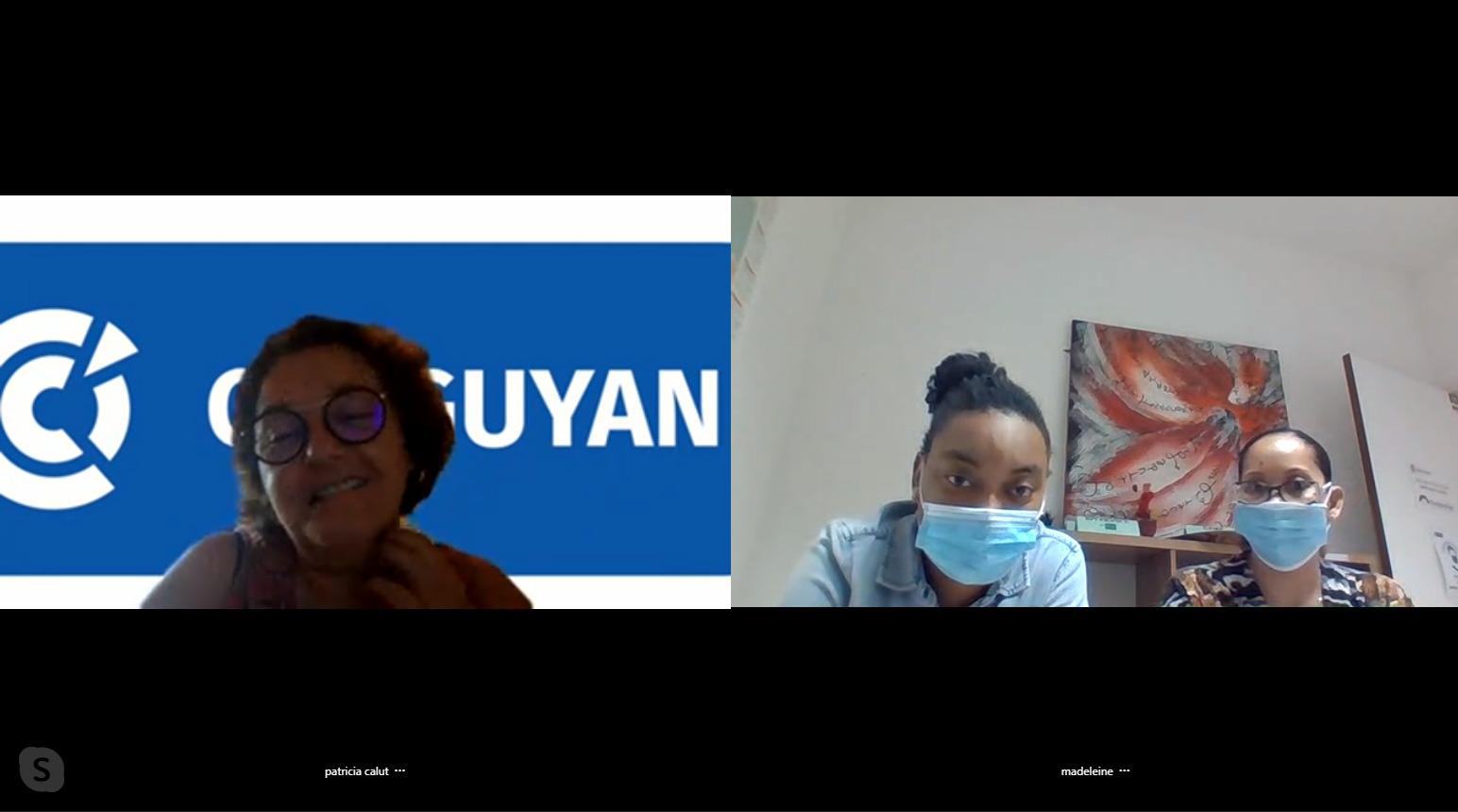 Formation de la CCI Guyane sur le logiciel exclusif du Pôle Territorial de Coopération Economique Durable Odyssea, pour l'intégration des entreprises de l'économie bleue et verte